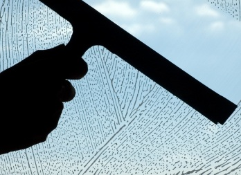 HomeZada professionally clean all windows